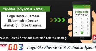 Logo Go Plus ve Go3 E-ihracat İşlemleri